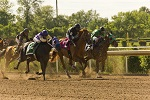 Fort Erie Racetrack